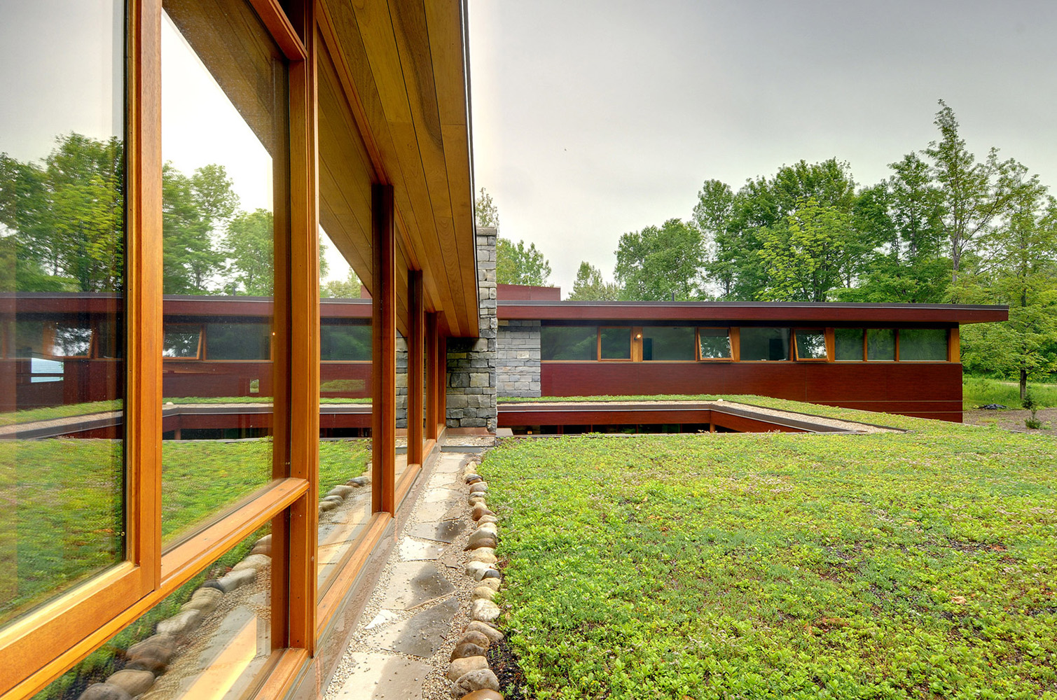 Ontario cottage green roof with wood framed curtain wall and phenolic panelling